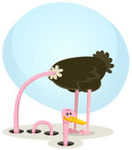 Ostrich Hiding And Looking From Hole — Stock Vector