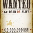 Wanted Vintage Western Poster — Stock Vector #39636301