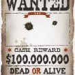 Wanted Vintage Western Poster — Stock Vector #43759283