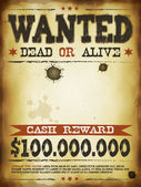 Wanted Vintage Western Poster — Stock Vector