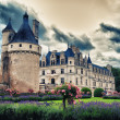 The biggest french medieval castle (Loire Valley) — Stock Photo #13165193