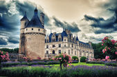 The biggest french medieval castle (Loire Valley) — Stock Photo