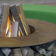 Fireplace - Photo