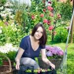 Young woman gardening — Stock Photo #11381017