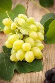Delicious white grape — Stock Photo