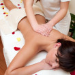 Back massage — Stock Photo #14318211