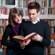 Stock Photo: Reading book together