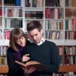 Stock Photo: Couple of students at the library