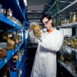 Smart biologist — Stock Photo