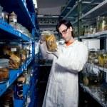 Smart biologist — Stock Photo