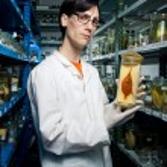 Biologist holding fish — Stock Photo