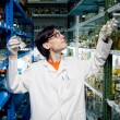 Neerd scientist working at lab — Stock Photo #15475517