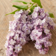 Lilac on wooden surface - Stock Photo