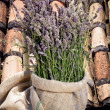 Lavender bouquet — Stock Photo
