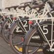 Bicycles for rent — Stockfoto