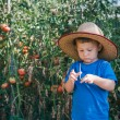Little farmer — Stock Photo #29879163