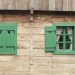 Log cabin detail — Stock Photo #35582095
