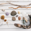 Beach finds — Stock Photo