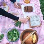 At the picnic — Stock Photo
