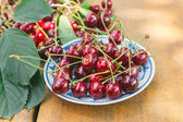 Sour cherries — Foto Stock