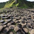 Giant's Causeway stones and mountain — Stock Photo #25173645