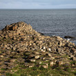 Stock Photo: Giant's Causeway stones