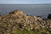 Giant's Causeway stones — Stock Photo