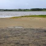 The Streedagh Strand in Sligo county, Ireland — Stock Photo