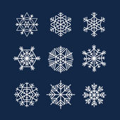 Abstract symmetry winter snowflakes collection — Stock Vector