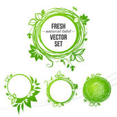 Fresh green circle label (with place for your text) — Stock Vector