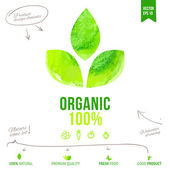 Watercolor vector drawing label for organic food design — 图库矢量图片