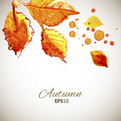 Autumn sunny watercolor top leaves and wind background — 图库矢量图片