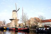Windmill Roode Leeuw in Gouda — Stock Photo