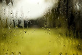 Windshield with rain drops and green white background — Stock Photo
