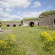 Tourists and flowers on the fortification island Suomenlinna — Stock Photo #48633803