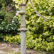 Old cast iron water pump in garden — Stock Photo #49582161