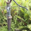 Old cast iron water pump in garden — Stock Photo #49582433