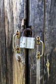 Lock on the gate — Stock Photo