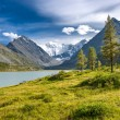 Altay — Stock Photo #36722065