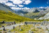 Altay — Stock Photo