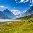 Altay Altai — Stock Photo #36784743