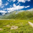 Altay Altai — Stock Photo #36784853