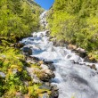 Altay Altai — Stock Photo #37182207