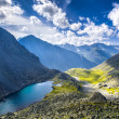Altay Altai — Stock Photo #37182261