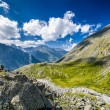 Altay Altai — Stock Photo #37182279