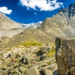 Altay Altai — Stock Photo #37182337