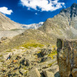 Altay Altai — Stock Photo