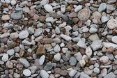Pebbles in Devon — Stock Photo