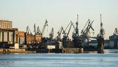 Cargo cranes in St.Petersburg — Stock Photo