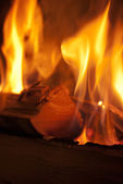 Wood burning in flames — Stock Photo